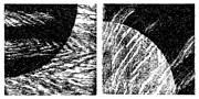 SYN4-11.jpg