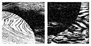 SYN4-23.jpg